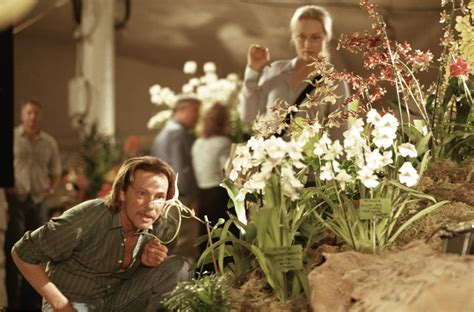 film nicolas cage orchid charlie kaufman and the art of adaptation curnblog