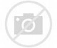 Foto-foto Binatang lucu - Media Belajarku