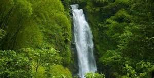 My wedding talk honeymoon destination amazon rainforest brazil