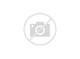 Stained Glass Suncatchers For Windows Pictures