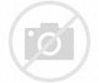 Gambar Animasi Bergerak Lucu