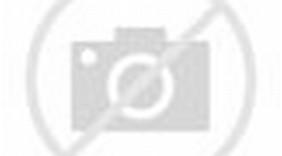 Outside Air Economizer