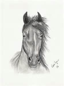 Horse drawing by carriephlyons on deviantart