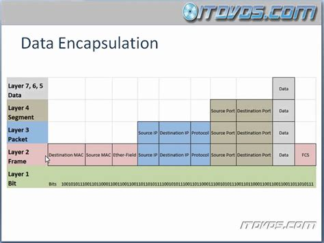 statistics tutorial online video ccna training cbt data encapsulation youtube