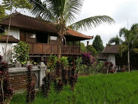 Puri Lumbung Cottages Picture Of Puri Lumbung Cottages Puri Lumbung Cottages