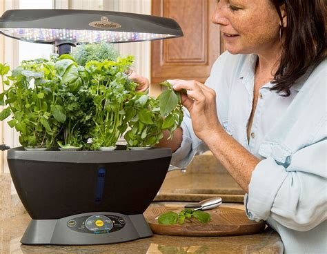 office herb garden indoor hydroponic herb garden systems kits better