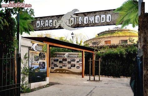 ingresso bioparco roma ingresso area tematica draghi di komodo l esclusiva