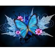 Blue Butterfly Wallpaper 9150 Hd Wallpapers In Cute  Imagescicom