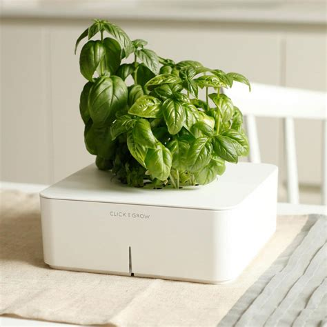 click and grow click grow smartpot the green head