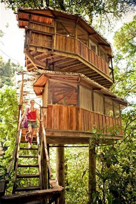 treehouse community finca bellavista a community of amazing treetop homes in