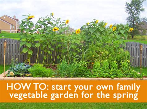 5 Tips On How To Start A Family Vegetable Garden This Starting A Small Vegetable Garden