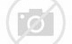 Sister Korean Group
