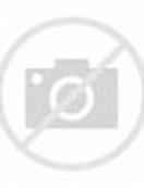 Half Black and White Cat