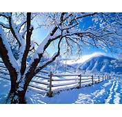 Enjoy These Beautiful Pictures Of Snow To View The In
