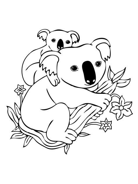Printable Koala Coloring Pages | free printable koala coloring pages for kids
