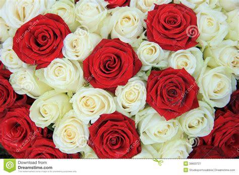 imagens de flores e rosas rosas vermelhas e brancas em um arranjo do casamento foto