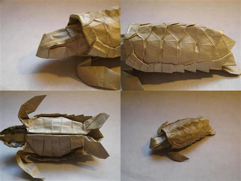 origami tutorial turtle loggerhead sea turtle details by origami artist galen on