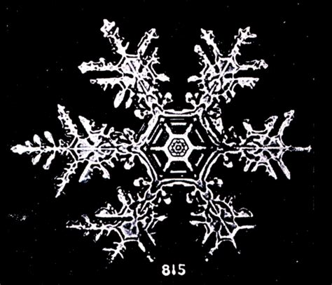 snowflake bentley never let me go wilson bentley s snowflakes