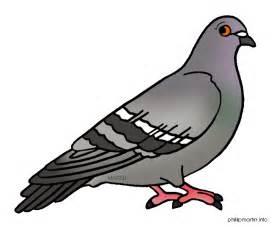 Cartoon pigeon clipart pigeon animal clip art downloadclipart org 4
