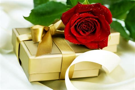 wallpaper flower gift beautiful flower wallpapers for you gift and love flower