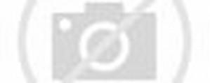 Avenged Sevenfold Death Bat Logo