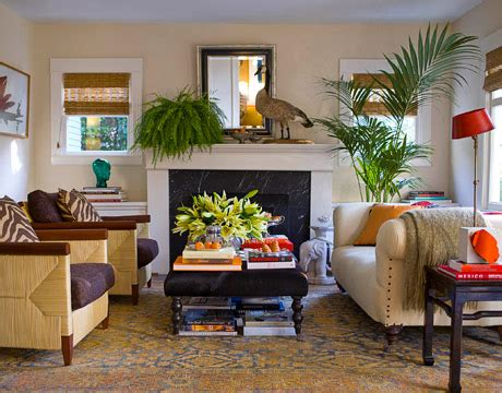 indoor living room plants recreate your space with time pottery this site is the bee s knees
