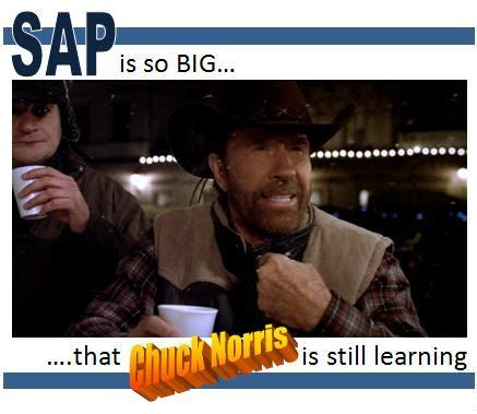Sap Meme - sap is so big that chuck norris is still learning