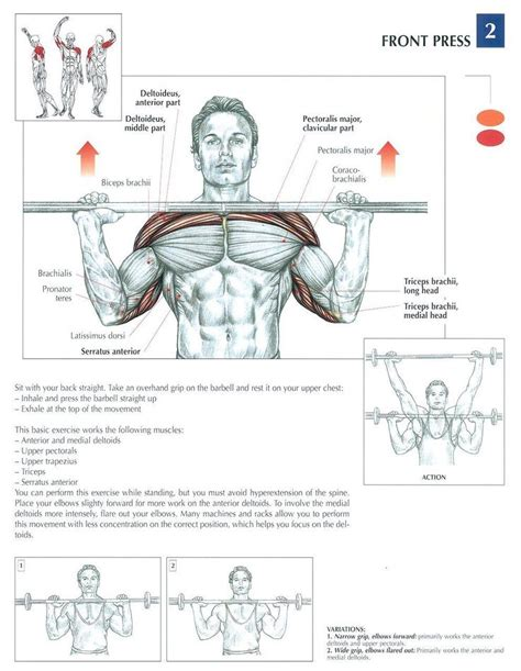 exercise diagrams front press health fitness exercises diagrams