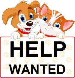 dog sitter jobs job openings pet sitting and pet care