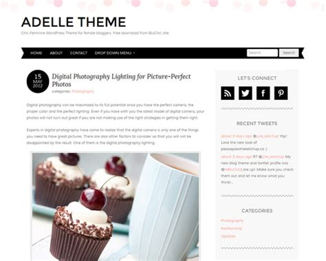 wordpress themes free blog personal adelle theme free personal blog wordpress theme