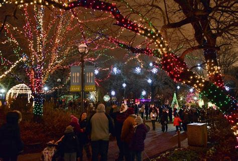 lincoln park zoo lights 2017 powering lives network