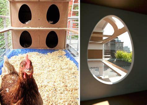 design milk chicken chicken co op design milk