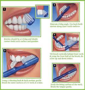 how to brush teeth the right way