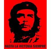 Frases De El Che Guevara  Taringa