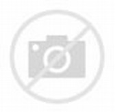 Animasi Bergerak Monkey