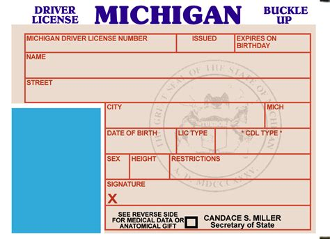 michigan id card template temporary id template related keywords