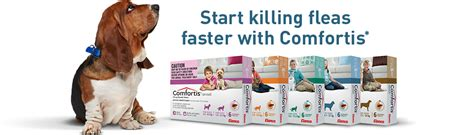 comfortis for dogs 5 10 lbs revolution for dogs and cats comfortis plus bravecto autos post
