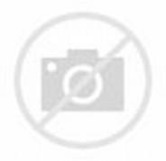 High Resolution Free Floral Frames