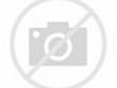 Gambar Pemandangan Alam Yang Indah