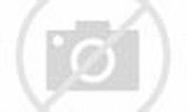 Honda CBR 250 Modification Thailand