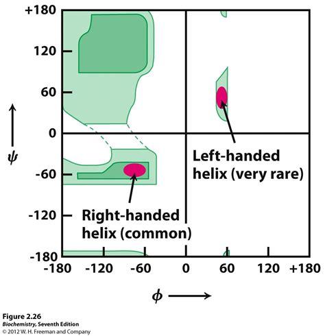 ramachandran diagram kevin ahern s biochemistry bb 450 550 at oregon state