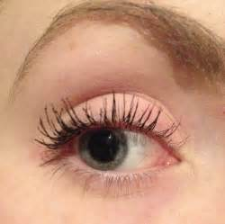 Eyelash mites related keywords amp suggestions eyelash mites long tail