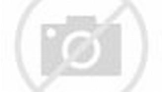 Download Tema Naruto Kyuubi Untuk Windows7 | BLOG HIENZO