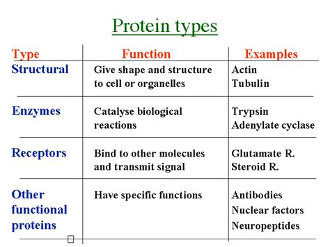 protein types 2 food science 200 with at pennsylvania