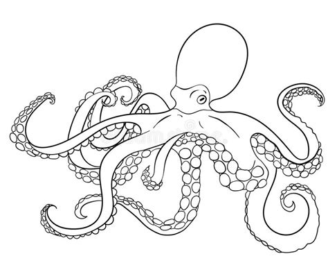 doodle and sketchbook a coloring activity and doodle book for of all ages books octopus with high details stock vector image of artwork