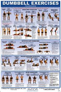 Cdll dumbbell exercise poster lower body core chest amp back