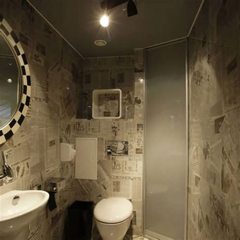 unusual bathroom  toilet designs design swan