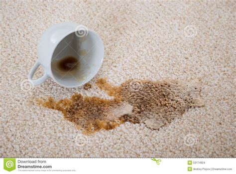 spilled coffee on rug coffee spilling on carpet stock photo image 53174924