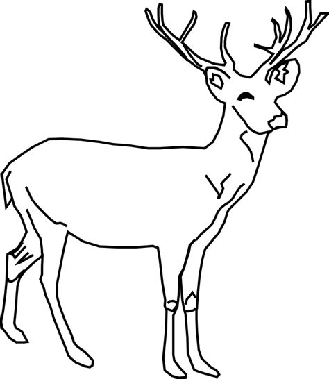 fawn deer coloring pages baby deer coloring pages clipart panda free clipart images