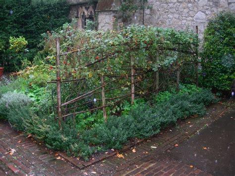 Raspberry Trellis Trellis Garden Ideas